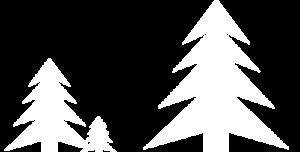 ForstAdmin Logo